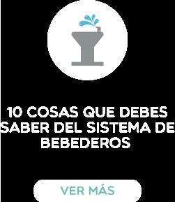 10cosas